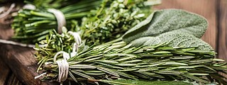 Now is the time in the Northwest to cut, freeze and save fresh herbs for the winter.